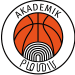 Академик Пловдив А